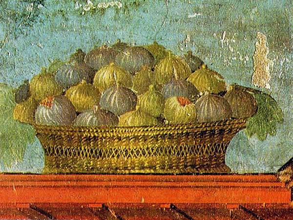 Fiaba 9 – Un paniere di fichi per la figlia del re (O kunto ma ta sika)