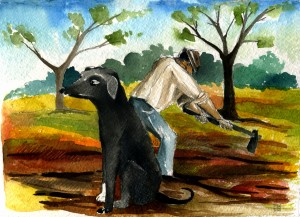 cane pici fa la guardia (1)